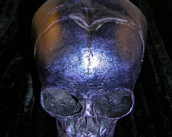 Replica Human Fetus Skull in multichrome finish black resin OOAK