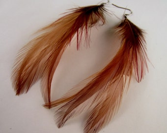 red pheasant and ginger feather earrings