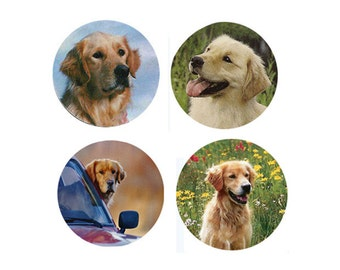 Golden Magnets: 4 Cool Goldens for your collection or a gift.