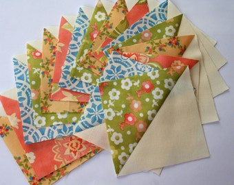 Fig Tree Quilts 16 Quilt blocks