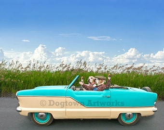 Going Places, original large photograph of Boxer dog couple cruising in vintage Nash Metropolitan convertible