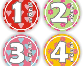 Baby Stickers - Baby Girl Monthly Stickers - Baby Shower Gift - Baby Month Stickers - Bodysuit Stickers