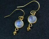 June Rainbow Moonstone Earrings - 14k Gold Filled Setting