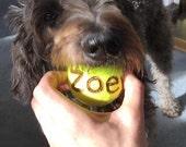 Personalized doggie tennis balls - set of three balls