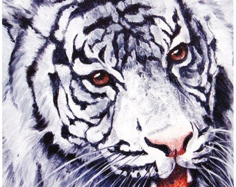 White Tiger close-up