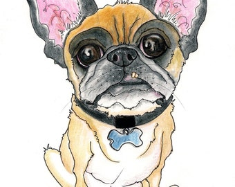 Custom Pet Caricature  Single Animal Full Body with TOYS