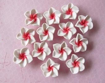 10 pcs Plumeria Frangipani Flower White and Pink Polymer Clay Beads/Flatback 25mm