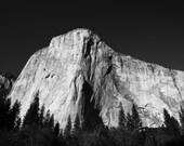 Yosemite National Park El Capitan Mountain Black and White Print