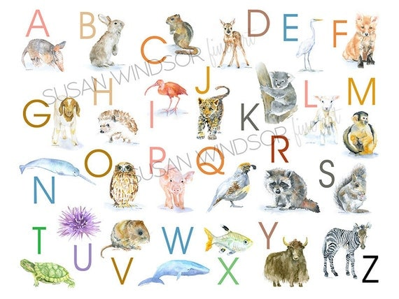 Animated Alphabet List Animal Alphabet Large Poster
