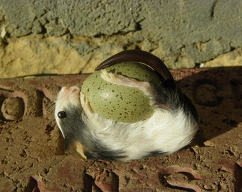 Taxidermy Mouse on a Button Quail Egg. Delilah.
