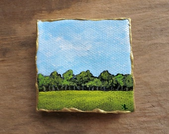 how to make miniature landscapes