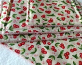 UNsponge Green Cleaning Sponge Alternative, Cleaning Cloths, Variety Pack, 4 REUSABLE SPONGES, Red Cherries