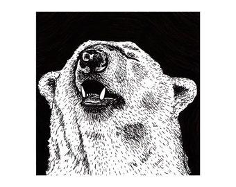 Polar Bear (Limited Edition Print)