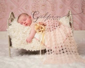 The Sofia Garden vintage newborn/toddelr prop bed (Discountinuing)  LIMITED AMOUNTS