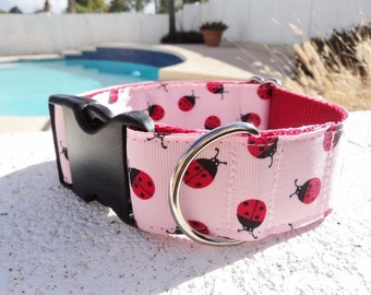 "Sale Large Dog Collar Ladybugs Pink 1.5"" width side release - see 1"" listing within / no martingale limited ribbon"