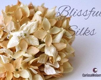 Silk Flowers - One Gorgeous Dry Look Hydrangea Head in Cream Beige - Artificial Flowers