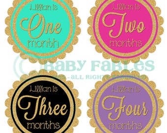 Personalized baby girl milestone stickers Monthly Baby Stickers Baby Month Stickers Baby Girl Month Stickers Monthly Photo Stickers