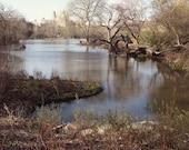Central Park Photography - New York City Photography - Fairy Tale Spring Urban Landscape Moody Romantic Dark Pastel Decor NYC Photo