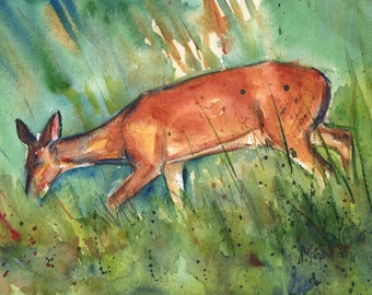 Twilight, Deer on the Sand Dunes, Hilton Head Island in watercolor