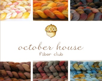 3 month fiber club - October House Fiber Arts - hand dyed roving for spinning or felting