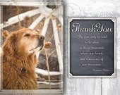 Dog Thank You Cards, Golden Retriever Cards, Thank You Cards, Thank You Card, Snowy Card, Dog Greeting Card, Appreciation Card, Pet Card