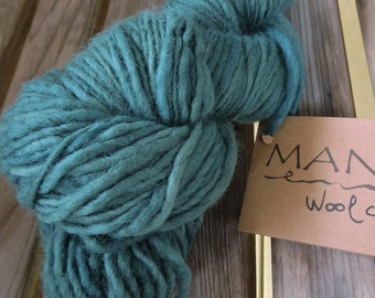 CHUNKY Weight Yarn - Spruce (#D) Kettle Dyed Merino Corriedale - 100 g 138 yards - Manos del Uruguay Clasica