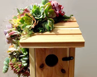 Succulent Trimmed Birdhouse, hand crafted and unique garden accessory, perfect for the bird lover!