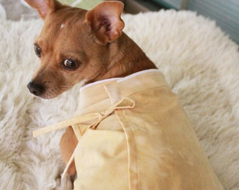 Natural Dyed Hanbok Style Dog Shirt MADE TO ORDER