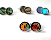 Real Moth Wing Cuff Links, Men's Wedding Cuff Links, Madagascan Sunset Moth Cufflinks, Real Butterfly
