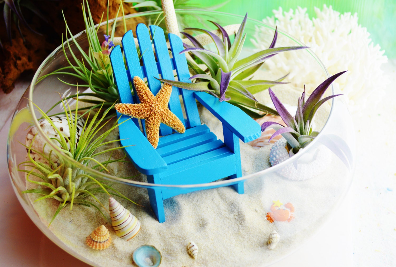 Beach terrarium kit with adirondack chair white pencil