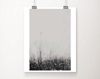 winter photograph black and white photography fog photograph grass photograph frost photograph nature photography