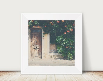 door photograph french decor travel photography architecture photograph france photograph pastel yellow print red flower photograph