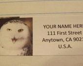 Snowy Owl Return Address Label