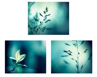 Teal Photography Set - Three Nature 11x14, 8x10 Photographs, dark aqua turquoise blue 3 photo set botanical photography modern wall pictures