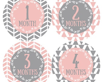 FREE GIFT, Arrow Month Stickers, Baby Girl, Pink, Gray, Grey, Baby Month Stickers Girl, Monthly Baby Stickers Girl, Tribal Nursery Pink Gray
