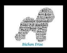 Bichon Frise, bichon, bichon frise, bichon frise art, Bichon Frise Artwork,Bichon Frise gift,Bichon Frise print