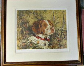 """Sportsman Collectible, Abbett's """"Brittany Head 1"""" Print, Signed & Numbered, Dog Print, Museum Quality Framing, Wall Hanging"""