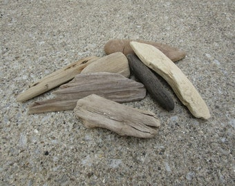 Lot of 7 Natural Driftwood Pieces Lake Michigan Driftwood Craft Supplies