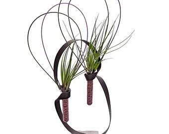 SOUL MATE terrarium- SALE air plant terrarium, terrarium, plant gifts, gift for her, xmas gift, girlfriend gift, mom gifts