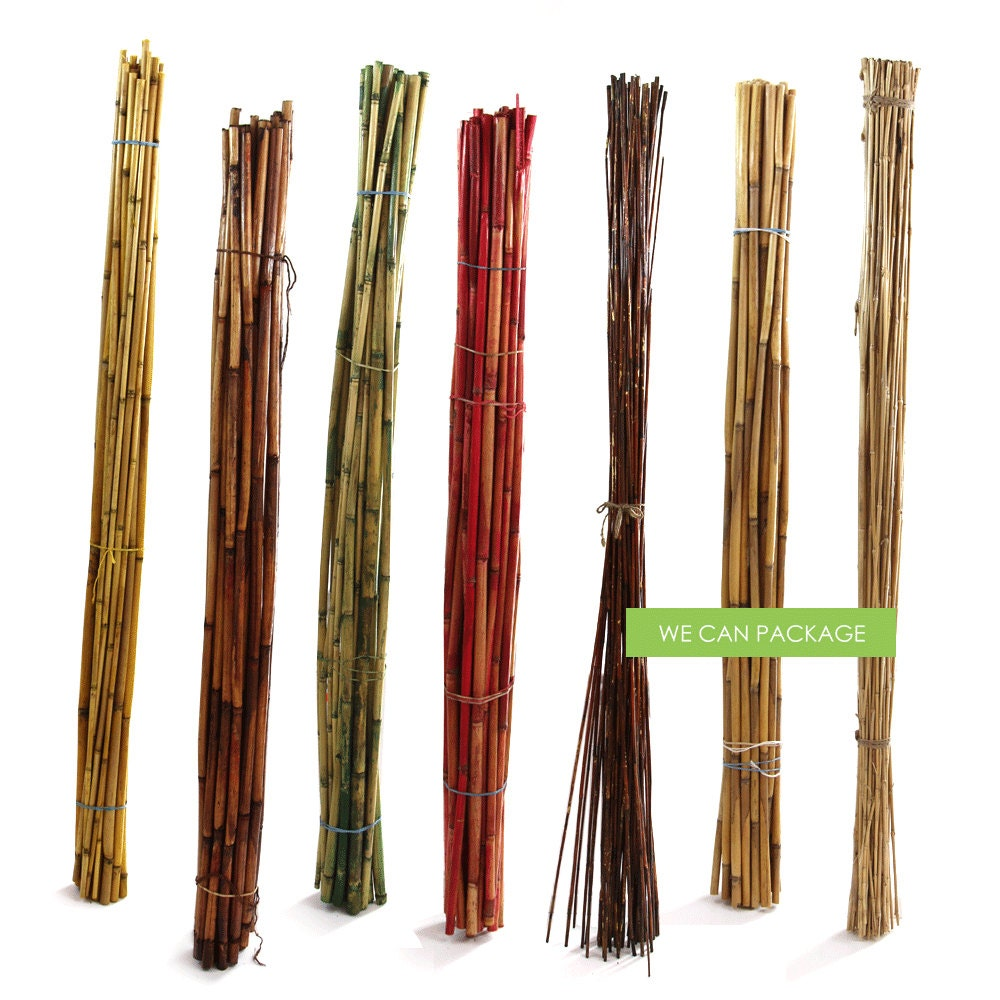 Bamboo poles river cane for arrangements centerpiece for Uses for bamboo canes