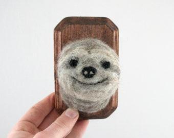 Faux Taxidermy Sloth (Bradypus variegatus)