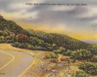 Vintage Linen Postcard....Stony Man Mountain and Profile 0n Skyline Dirve VA...Unused...no. 2604