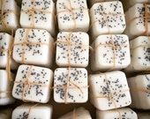 Jasmine Blossoms Mini Guest Soap Set of 6: Handmade, Goats Milk Soap, Sampler, exfoliating soap