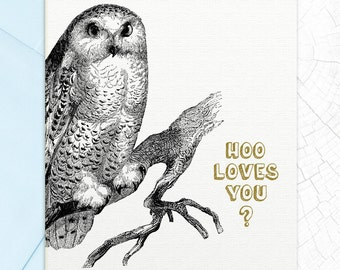 Hoo Loves You Valentines Day Card
