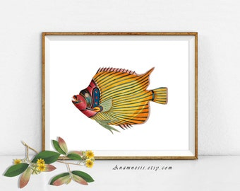COLORFUL TROPICAL FISH High Res Digital Image - large printable antique fish illustration retooled for image transfer - totes, pillows