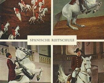 These Famous Horses - Vintage 1960s Vienna Spanish Riding School Souvenir Photo Postcard