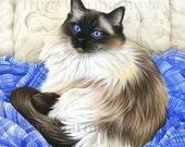 Ragdoll Cat Print Favourite Place by Irina Garmashova