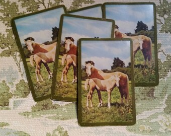 5 Beautiful Vintage Horse Playing Cards Farm Barn Tags Flash Cards