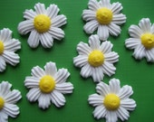Royal icing daisies -- Handmade cake decorations cupcake toppers (12 pieces)