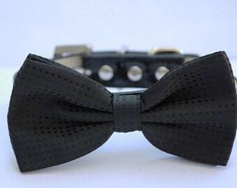 Black  Dog Bow Tie, wedding dog collar, Black Dog Bow tie attached to dog collar, Black dog bow tie, dog collar,  dog birthday gift
